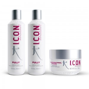 PACK ICON 2 CHAMPU FULLY APORTA VOLUMEN Y MASCARILLA INFUSION 60 SEGUNDOS